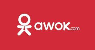 تجربة الشراء من موقع اووك Awok